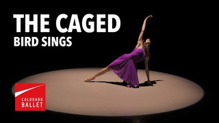 The Caged Bird Sings   Black History Month   Virtual Ballet
