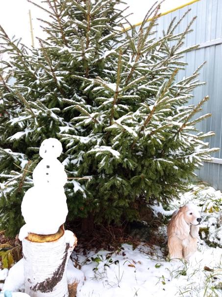 ☃Первый снеговичок! Фото Натальи Кульсиновой....