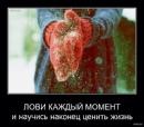 Личный фотоальбом Эльвиры Шараповой