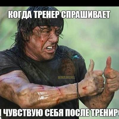 Александр Картина