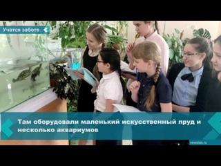 Первый в Красноярске кружок с экзотическими аквариумными животными открыт в одной из школ города