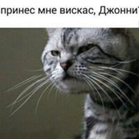 Фотография Виталия Ушкова
