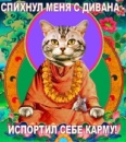 Фотоальбом Елизаветы Рисположенской