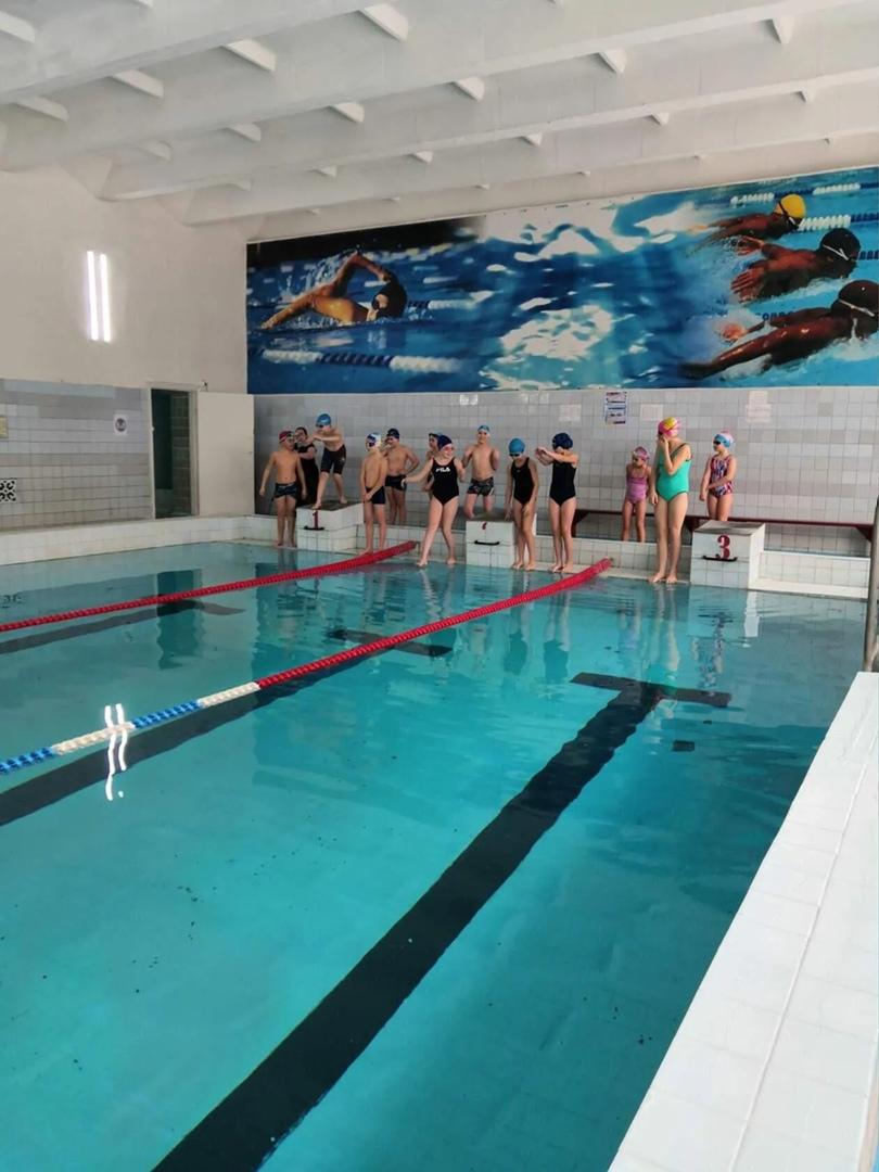 """В плавательном бассейне «Дельфин» ученики 4 и 5 классов стали участниками уникального тренировочного демо-занятия проекта """"Плавандия"""""""
