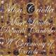 Varaždin Chamber Orchestra - Serenada za gudače in C Minor, Op. 48
