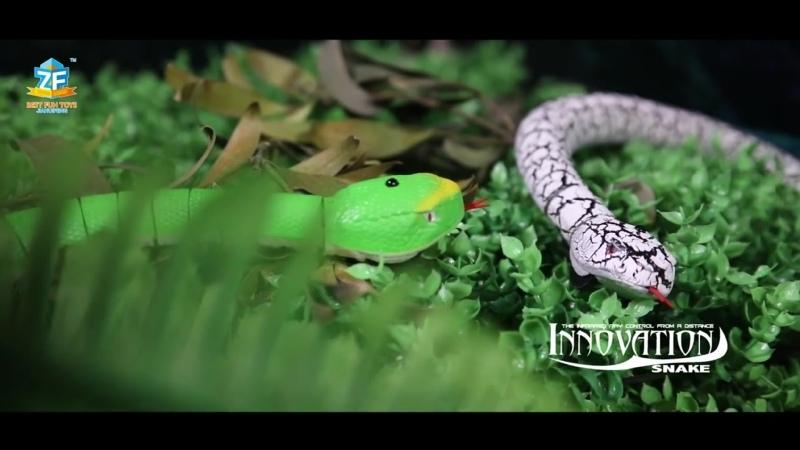 OCDAY RC Змея с дистанционным управлением и яйцо погремушка