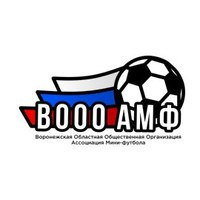 Логотип Ассоциация мини-футбола Воронежской Области
