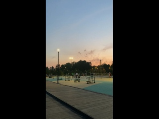 Video by Svetlana Maltseva