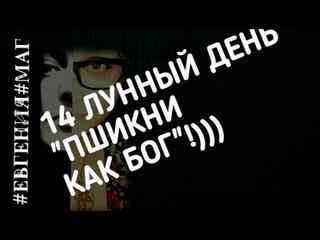 Евгения Протопопова-Тимофеева, ПШИКНИ КАК БОГ! 14 ЛУННЫЙ! ДЕНЬ!
