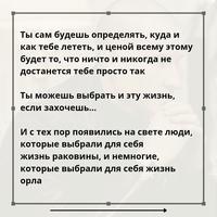 Алексей Толкачев фото №33