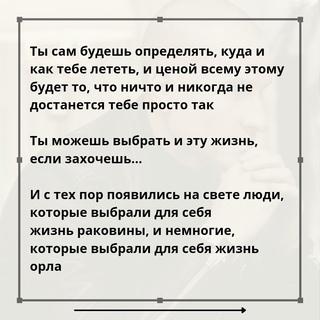 Алексей Толкачев фотография #17