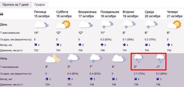 Первый снег в Самарской области обещают в ночь на ...