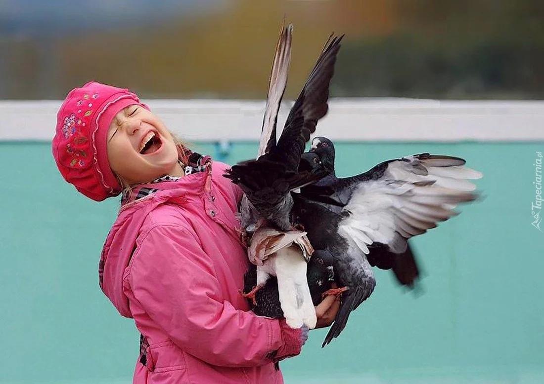 Почему нельзя трогать голубей на улице? Болезни, которые хранят в себе птицы