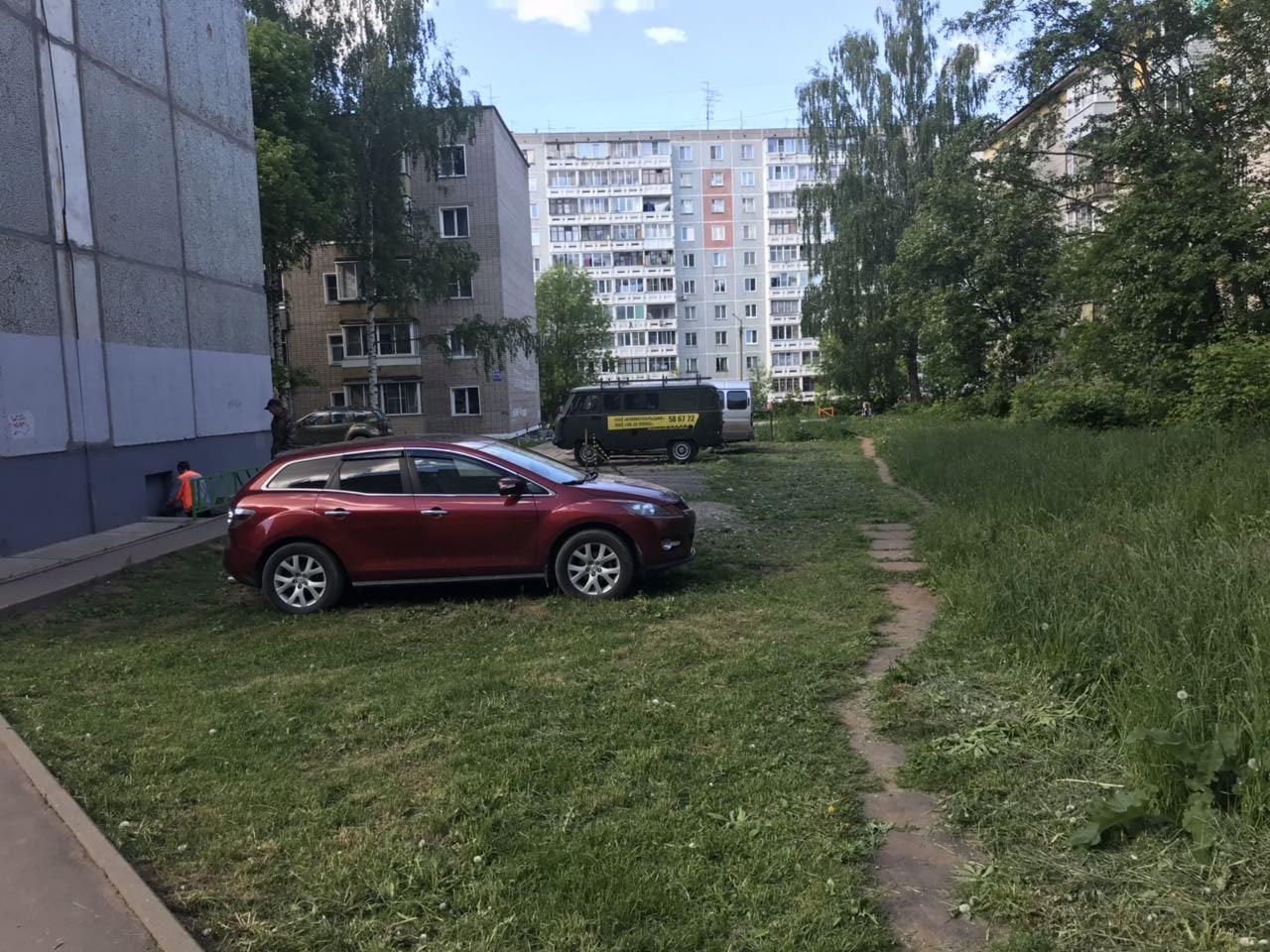 Московская 173 кошение газонов