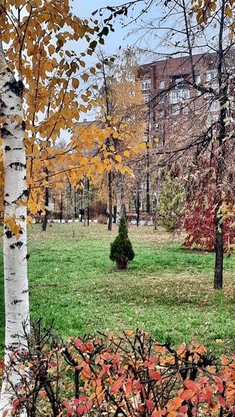 Октябрь в Кузнецком парке 🍃🍂 😌 Доброго понедельник...
