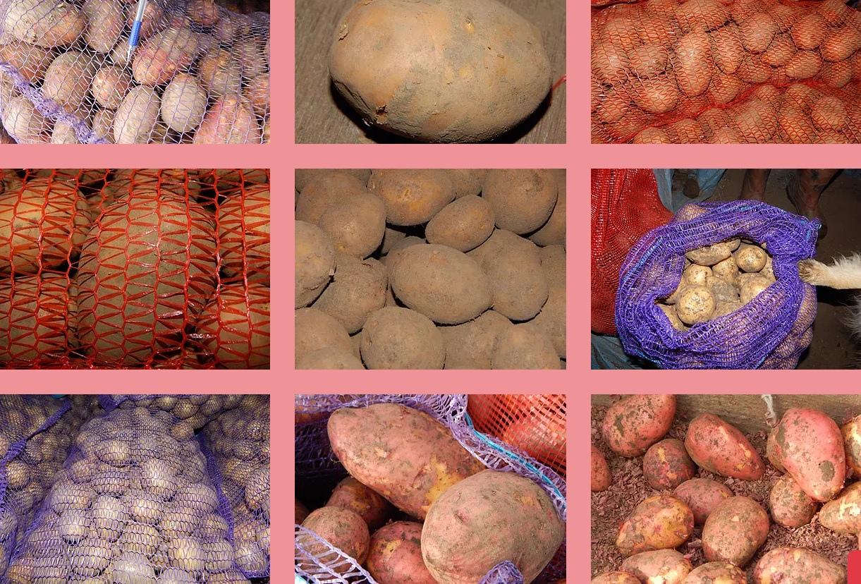 Купить мешок картошки с доставкой на дом Ангарск