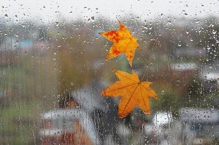 На регион надвигается ветер и дождевые тучиВ четверг, 14 ...