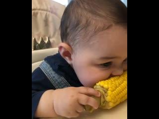 Мне тоже захотелось кукурузы)))