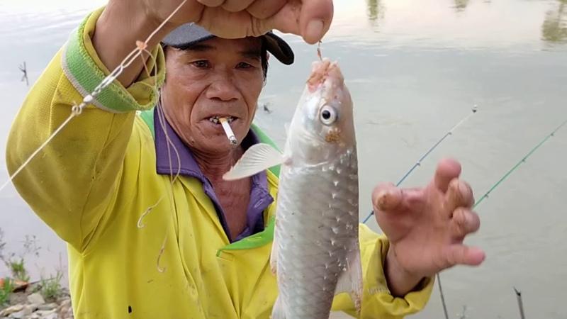 @công táo vlogs dinhhuutoan đi săn lùng loài cá quý hiếm ở tây nguyên cái kết không tưởng