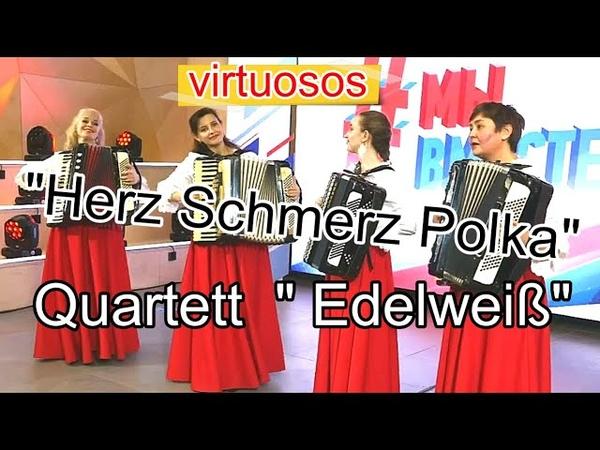 Квартет аккордеонисток Эдельвейс Herz Schmerz Polka Edelweiss Quartet Новосибирск