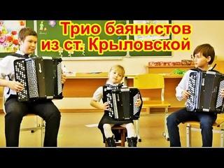 Трио баянистов из ст.Крыловской. Выступление перед школьниками
