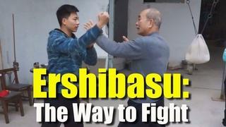 Ershibasu: The Way to Fight
