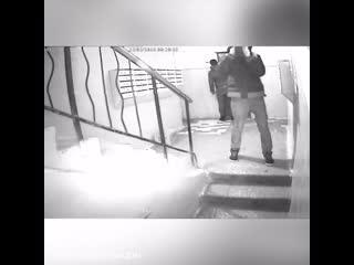 Тольяттинские вандалы разрисовали подъезд и сорвали камеру