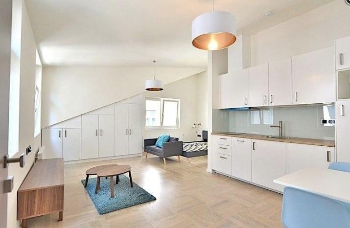 Как в разных странах мира выглядит жилье за $1000 в месяц, изображение №32