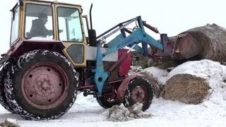 Почему сгнивает сено неправильное складирование рулонов сена