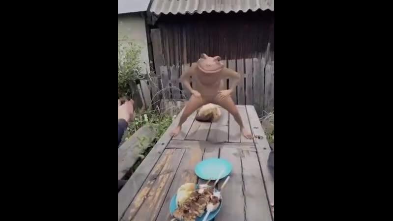лягушка танцует танец на столе для алкашей шок ебля школьница анунаки хайп засадил молодая молоденькая 18 клип Молли Айлиш секс