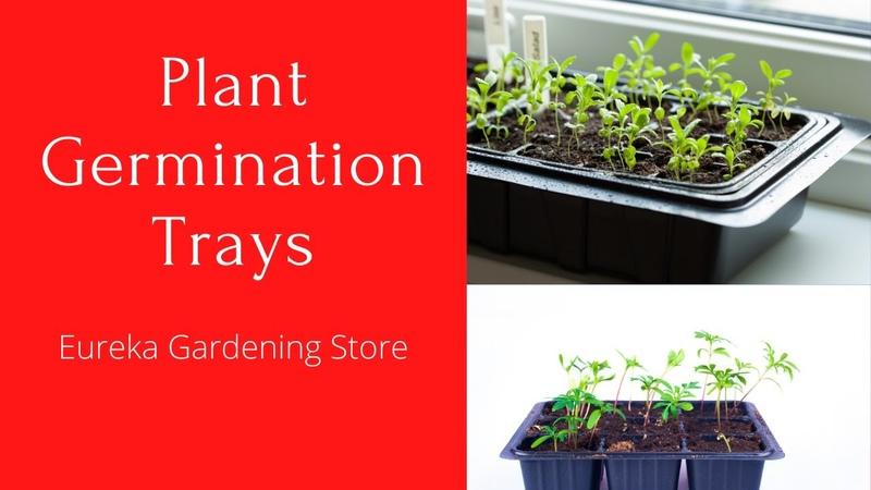 Best Plant Germination Trays gardening  amazon