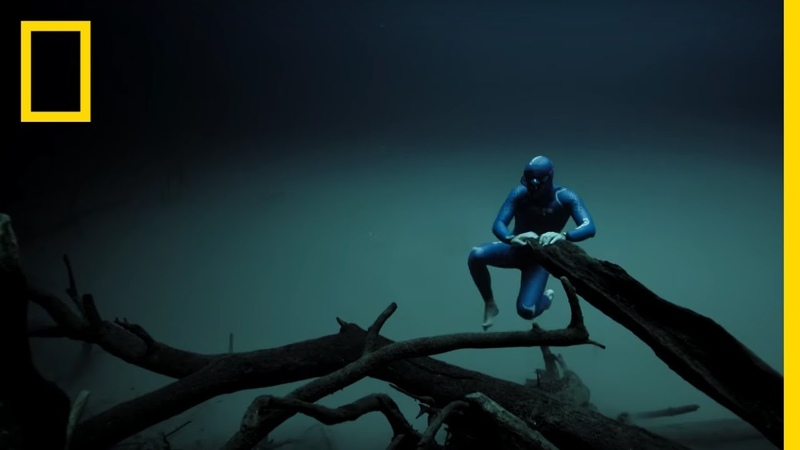 Experience the Underwater World Through the Eyes of a Free Diver Short Film Showcase