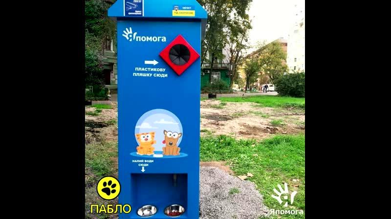 Автомат который взамен на пластиковые бутылки выдаёт корм для бездомных животных