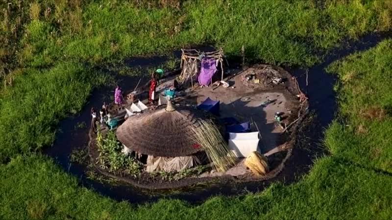 Они живут посреди самого большого болота Африки Нилоты на болоте Судд